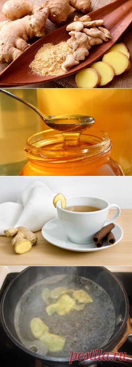 Полезные свойства имбиря и рецепты — Делимся советами