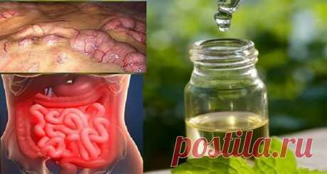 Выведите все шлаки из организма в течение 3-х дней: Метод, который предотвращает рак, удаляет жир и лишнюю воду!