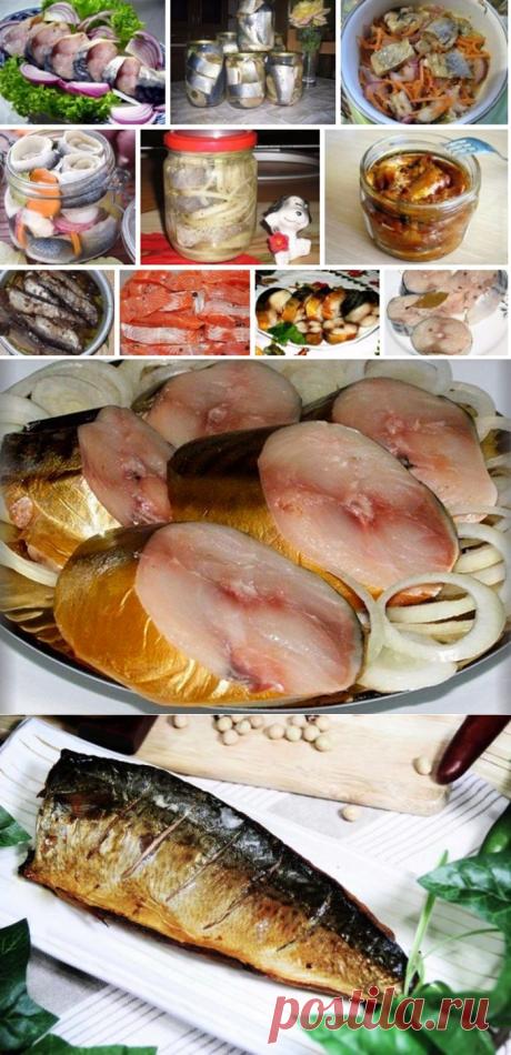 10 потрясающих рецептов — Изумительная скумбрия в маринаде — Рыбка за 3 минуты и другие… — Калейдоскоп событий