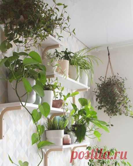 Как оформить пустую стену на кухне: 10 решений, от которых вы будете в восторге - Дом Mail.ru