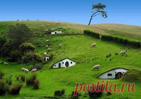 Хоббитон - знаменитое место, где снимался фильм Властелин колец, Матамата, Новая Зеландия