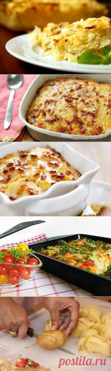 Как приготовить картофельную запеканку: 5 рецептов