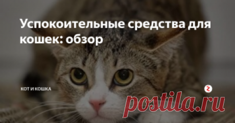 Успокоительные средства для кошек: обзор Кошки не всегда остаются спокойными, они легко возбуждаются, поддаются стрессу не реже, чем люди. Животные нервничают во время переезда в новое жилище, перед посещением ветеринара, услышав пугающие звуки. О стрессовом состоянии питомца свидетельствует гиперактивность, изменение поведенческих привычек, метка территории, громкое мяуканье. Чтобы устранить беспокойство, сделать жизнь домашнего любимца