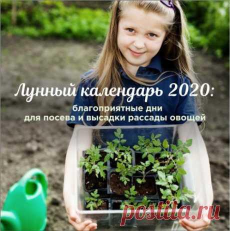 Журнал Огород.ru - Форум для дачников | Огород.ru