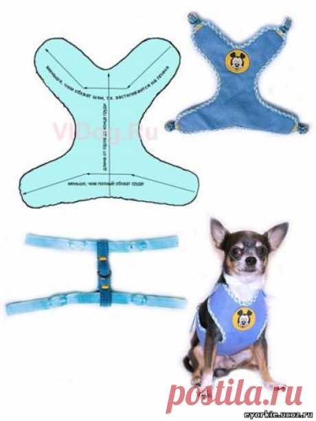 Выкройки одежды для собак - Форум НАШИ ЙОРКИ И ИХ ДРУЗЬЯ