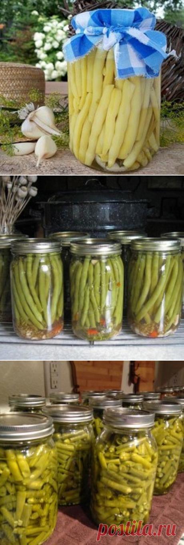 Спаржевая фасоль рецепты приготовления на зиму: такие популярные виды заготовки как консервированная и заморозка » eТеплица