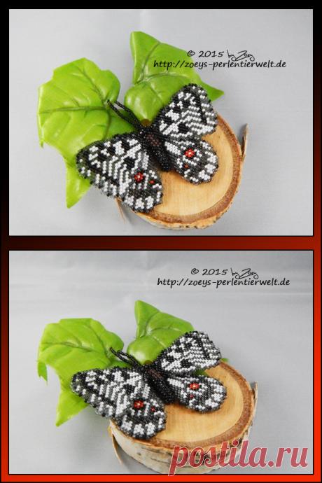 Schmetterling6 by Zoey-01 on DeviantArt