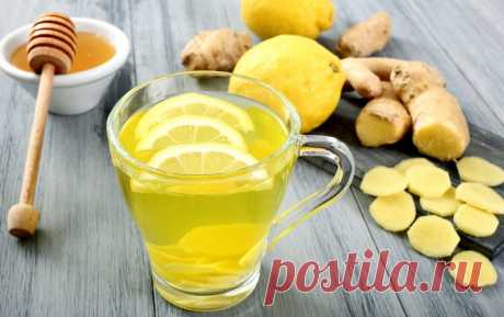 Ginger root for weight loss: how to use what action, useful properties and advantage for women as influences a human body, responses
