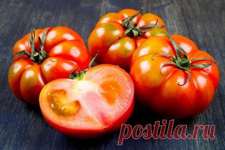 Польза аспирина для томатов | О Фазенде. Загородная жизнь | Яндекс Дзен