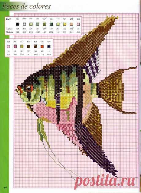 Вышивка на морскую тематику. Схемы рыбок