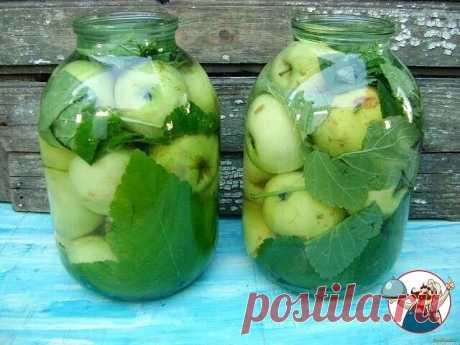Моченые яблоки в банках. Очень простой рецепт.   Продукты на 2 кг яблок:   2 кг небольших яблок  3 л воды  150 г сахара  2 ст.л. соли  150 г меда  Листья винограда и смородины  Приготовление:   1. Яблоки промыть и сложить в большой эмалированный таз.   2. Соль, сахар и мед смешать с водой, довести до кипения и уварить.   3. Снять с огня и сразу вылить на яблоки. Добавить листья винограда и смородины.   4. Сверху положить тарелку и поставить груз.  Оставить для брожения при...