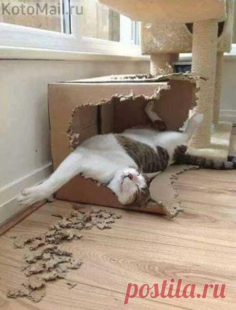 Художественная грызьба по коробке