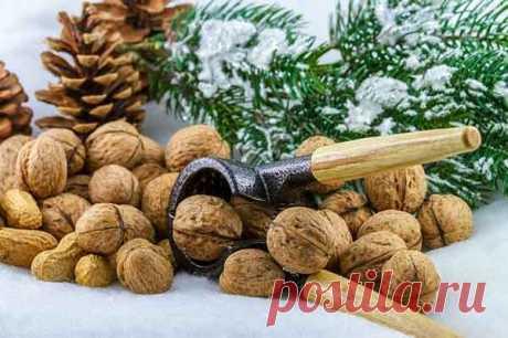 Польза и вред грецкого ореха для организма: сколько можно съесть