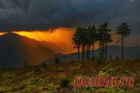 Пейзажи   589 фотографий   ВКонтакте