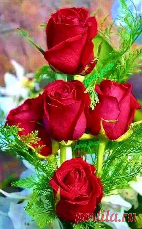 """""""Живи"""", - сказала Жизнь.  """"Люби"""", - нежно обняла Любовь.  """"Дари"""", - улыбнулось Счастье.  """"Верь и Иди"""", - простучало Сердце.  """"Решай"""", - подмигнула Мудрость. """"Попробуй…"""", - шепнула Мечта.   Нежность - закрыла глаза. Разум поддался Мечте...  Опыт - с улыбкой дорогу открыл. И Гордость с Причиной - вдруг возразить не смогли…  """"Пробуй!"""", - опять прошептала Мечта.  """"Будь!"""", - сказала и засмеялась Судьба...  Поцелуем своим наградила меня   И в подарок Удачу дала!"""
