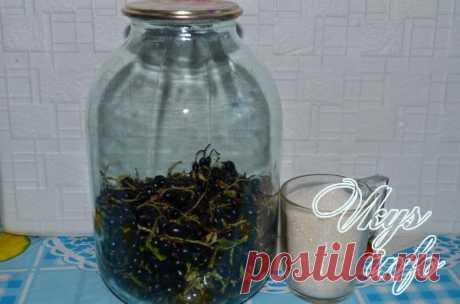 Компот из черной смородины на зиму рецепт