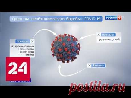 Волшебной таблетки от COVID-19 не будет: коронавирус можно победить лишь комплексно - Россия 24