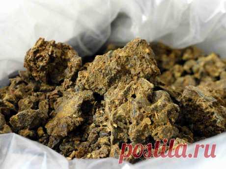Лечение прополисом органов пищеварения Прополис представляет собой клейкое вещество c горьким вкусом и характерным запахом. При длительном хранении затвердевает и в значительной степени теряет запах. По структуре это плотная неоднородная масса...