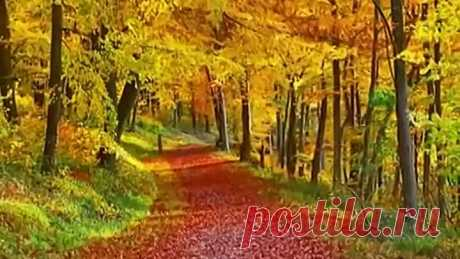 Ф. Шопен - Осень