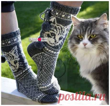 Жаккардовые носки с изображением котика