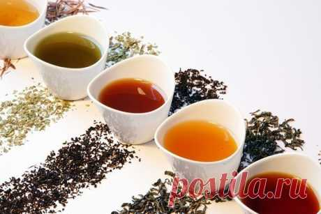 6 полезных добавок к чаю:  1. Анис - его плоды полезно добавлять в чай, как только у вас появилось неприятное шероховатое ощущение в горле. Такой чай можно принимать и если кашель уже начался - вылечиться получится гораздо быстрее.  2. Жасмин - он помогает справиться с общим упадком сил и симптомами хронической усталости, поднимет пониженное артериальное давление и возбуждает аппетит. Показать полностью…