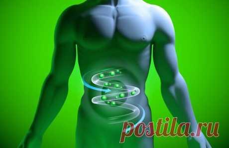 Продукты от газообразования | Здоровье проявляет красоту | Яндекс Дзен