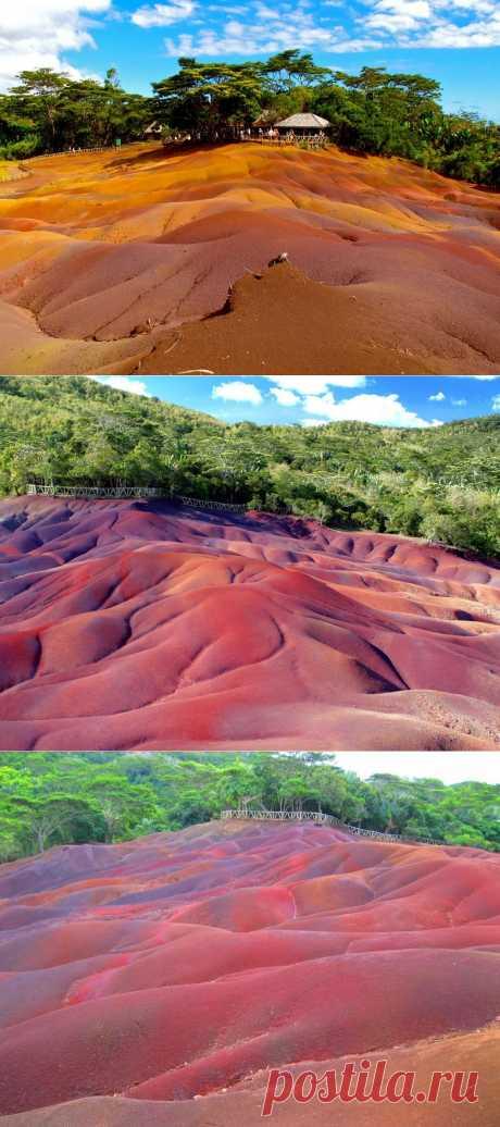 Лучшие фотографии со всего света - Шамарель - цветная земля