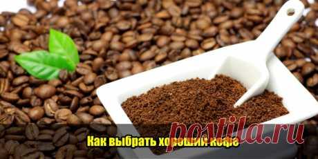 Как выбрать хороший кофе | Полезные советы