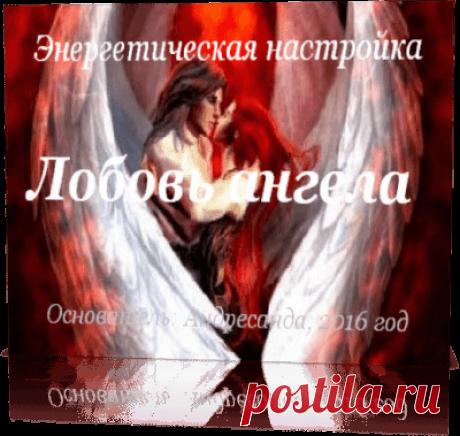 Материализация желаний и настройка Любовь Ангела — Андресанда