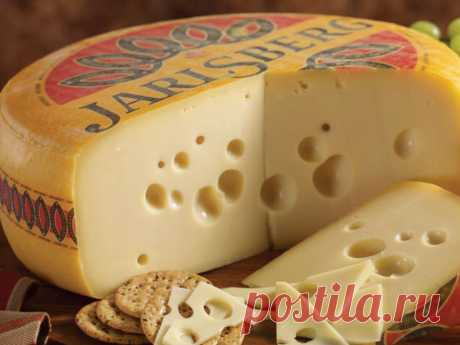 Recipe of cheese Yarlsberg | Recipes of cheese | Cheese House: in total for house cheese making