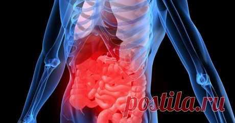 Как восстановить микрофлору кишечника без лекарств: 10 способов 10 натуральных продуктов, восстанавливающих МИКРОФЛОРУ кишечника без медикаментов. Считается, что пробиотики из аптеки не имеют того результата, какой дают йогурты с живыми бактериями. Порядка 85% этих бактерий погибает в кислой среде желудка, остальные отторгаются собственной микрофлорой кишечника. В общем, ничего не «заселяется»,... Читай дальше на сайте. Жми подробнее ➡