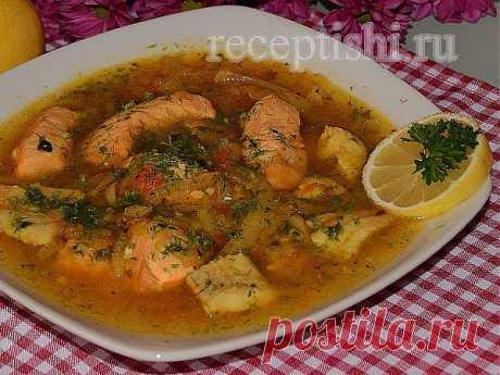 Уха из красной рыбы «Янтарная» | Кулинарные рецепты с фото на Рецептыши.ру