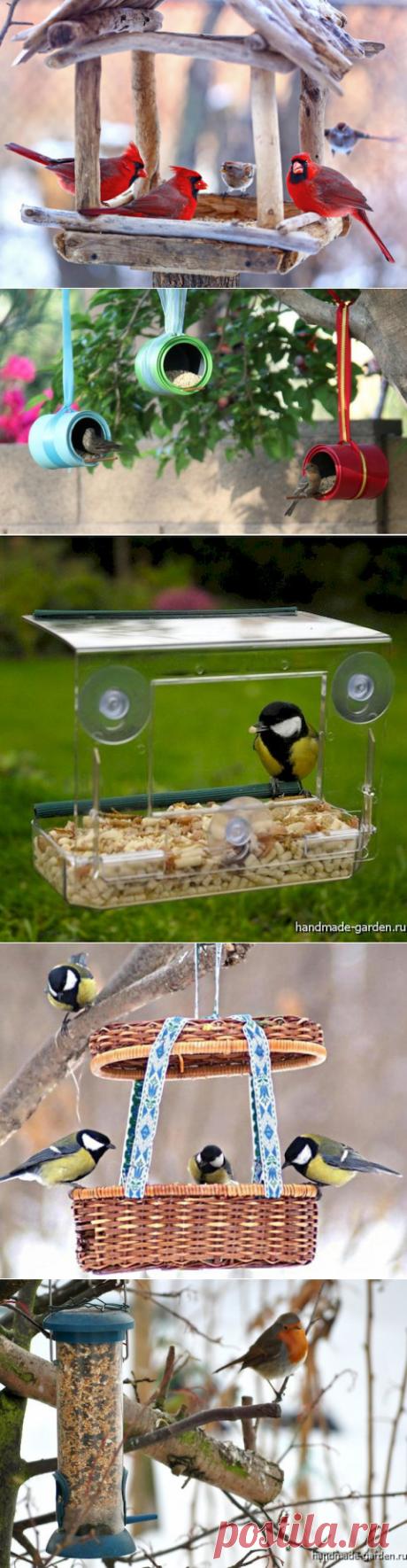 Отличные идеи птичьих кормушек. Много фото кормушек для птиц