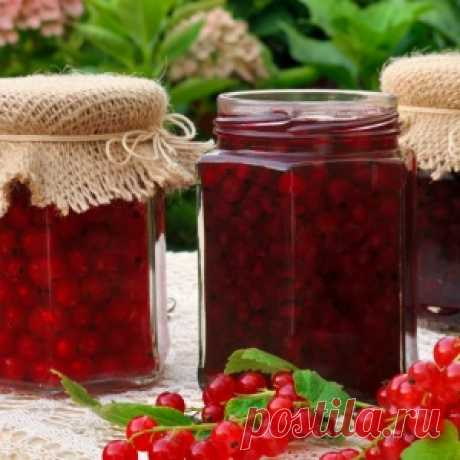 What to prepare from currant for the winter – simple recipes of tasty preparations - Mirtesen