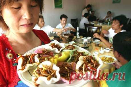 Китайские повара приготовили блюдо для храбрых духом едоков | В мире