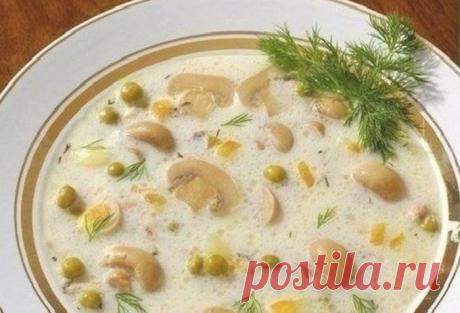Только для самых достойных! Сырный супчик с грибами - старинный рецепт! Вкусно, сытно и полезно!