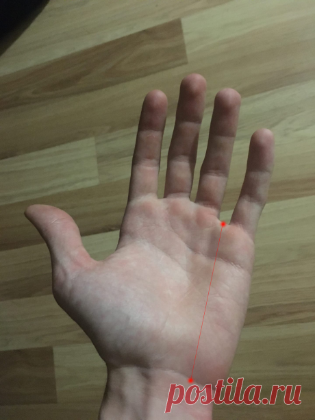 Две точки на теле, которые помогли мне снизить давление.   Оставайтесь дома   Яндекс Дзен