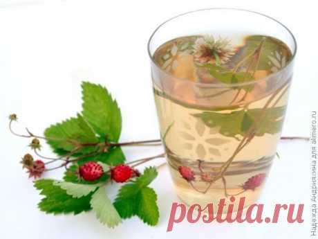 👌 Летний земляничный чай, рецепты с фото Из всех видов травяного чая для меня земляничный – вне конкуренции. Собирая землянику в лесу, я обязательно приношу домой букетики из веточек с ягодами и цветами и листьев. Все это...