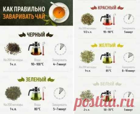 Как заварить идеальный чай