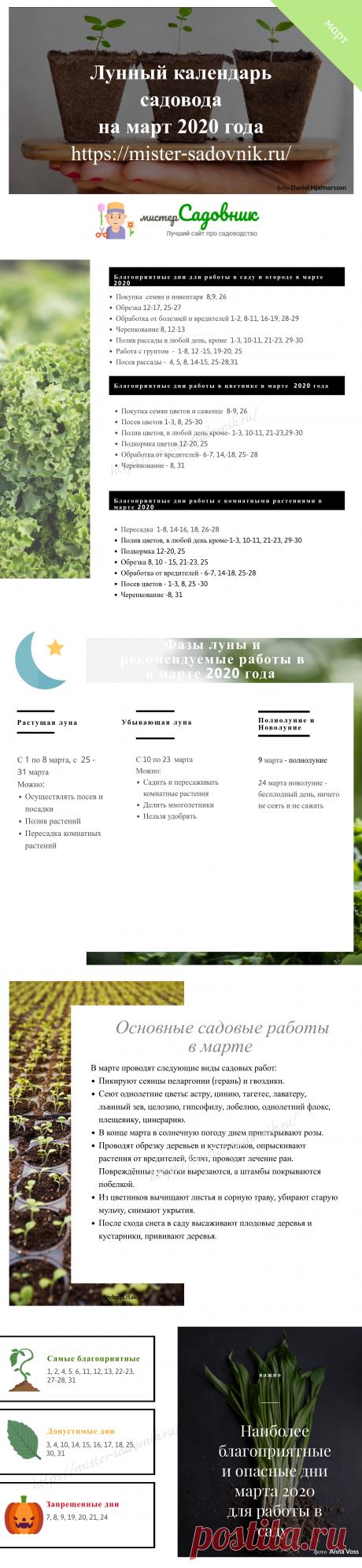 Лунный календарь садовода на март 2020 - таблица с инструкциями