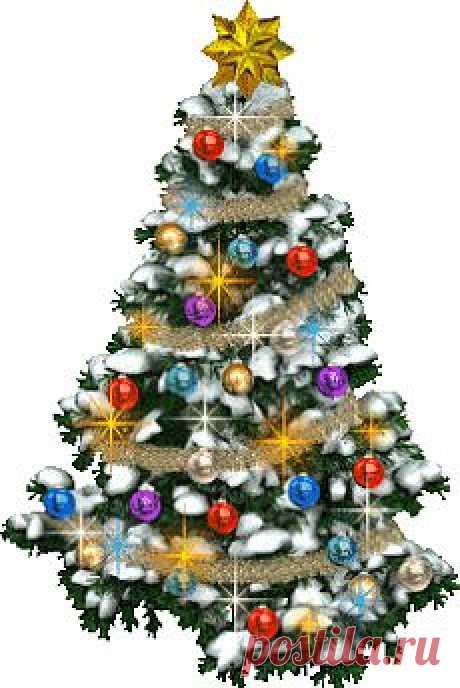 Желаю, чтобы Новый 2014 год Лошади стал для Вас годом «Пяти Вершин»! Первой вершиной, пусть станет Любовь. Ведь покорив, ее Вы почувствуете, как жизнь обретает новый смысл, и наполняется новыми, незабываемыми впечатлениями.
