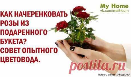Как начеренковать розы из подаренного букета!
