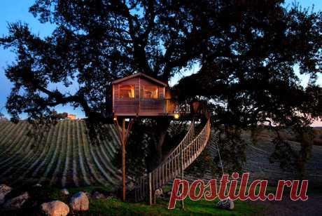 Сказочный домик на дереве со сказочным комфортом - BADBEE.RU