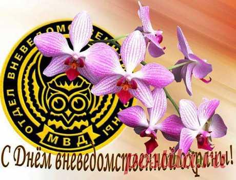 29 октября День работников службы вневедомственной охраны МВД. Поздравления с профессиональным праздником. | Поздравления и тосты