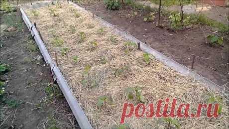 Как самостоятельно собрать измельчитель для травы и сена