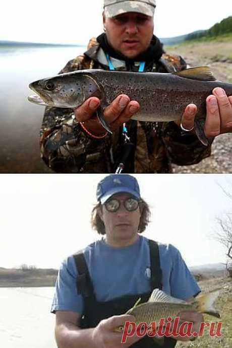 Диалоги о рыбалке / Cмотреть все выпуски онлайн / Russia2.tv