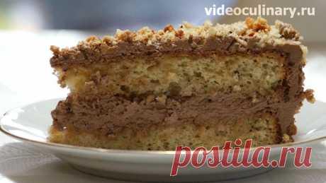 Торт Белочка – рецепт праздничного торта от Бабушки Эммы Вкусный и ароматный торт с лесными орехами и шоколадным кремом. Бабушка Эмма предлагает вам приготовить торт Белочка по этому Видео и Фото рецепту