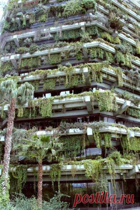 Вертикальные свисающие сады в Барселоне, Испания.