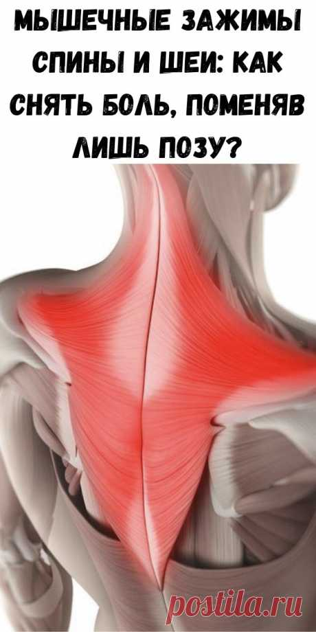 Мышечные зажимы спины и шеи: как снять боль, поменяв лишь позу? - Советы для тебя