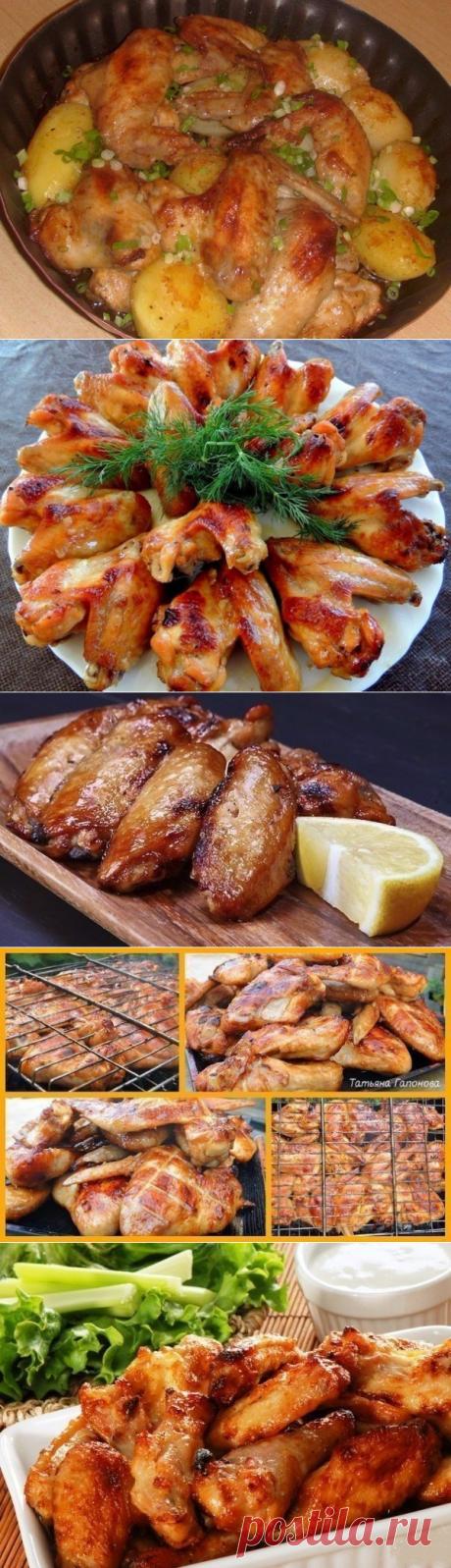 Готовим куриные крылышки – 10 лучших рецептов!